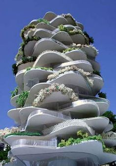 """""""Cactus House"""" was designed to maximize sunlight from all angles."""