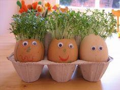 Turn egg shells into creative pots for garden herbs.