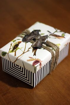 gift wrapping, birds, nature, pattern