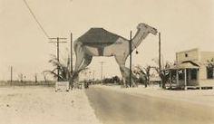 Boca Raton 1928
