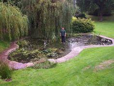 SaferPond - Child Pond Safety Grid