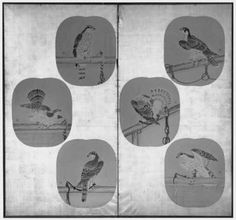 Tethered Hawks  架鷹図貼交屏風  Japanese, Edo period, 18th–19th century, Six round fans (uchiwa) mounted on a two-panel folding screen; ink and color on paper, MFA