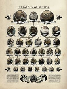 Beard hierarchy
