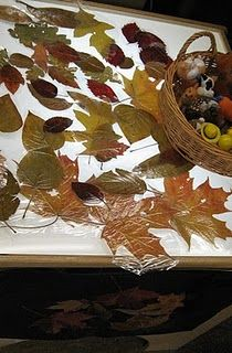 Laminated pressed leaves, plastic leaves and acorns from Michaels Craft store and later the children added toy people and animals.