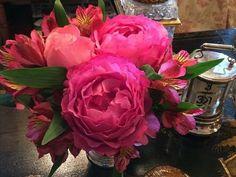 'Yves Piaget' roses