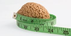 Obesity and your brain