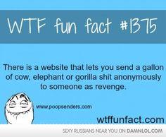 Sweet, Sweet, Revenge!