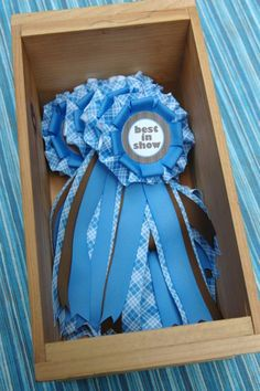 Best in Show Ribbons.  Make others for different party game prizes.