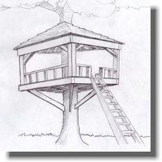 Treeless Tree House