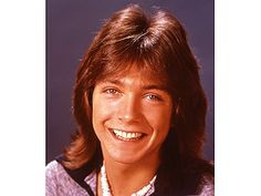 David Cassidy - my first love!