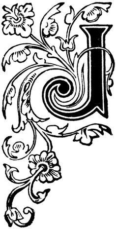 Floral Capital J