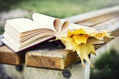 llego el otoño...