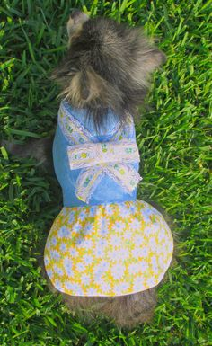 Dog Dress Made to Order Toy and Teacup by BloomingtailsDogDuds, $23.95
