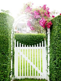 Beautiful entry