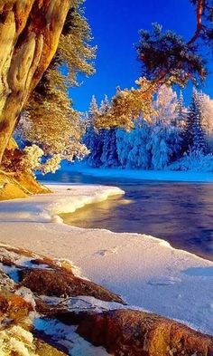 Snow Covered Beach | A1 Pictures