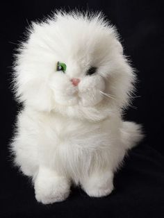 I got a stuffed cat like this when I was in 6th grade.  I still have it but it doesn't look like this at all anymore.