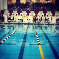Swimming is the best.