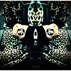Cheetah Poison  iPhone 4