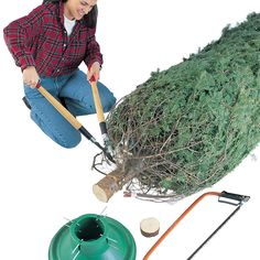 Handy Tips for Holiday Lights and Trees: #Christmas Tree Basics - Get the list: http://www.familyhandyman.com/smart-homeowner/ways-to-save-money/handy-tips-for-holiday-lights-and-trees