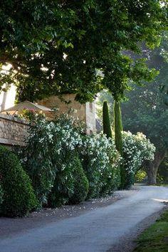 . Pretty in Provence