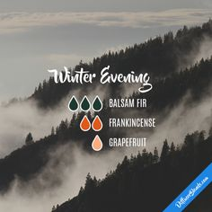 Winter Evening - Ess
