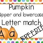 FREE! Match upper and lower case letters!...