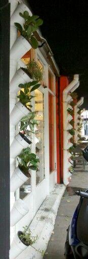 Jardín vertical con tubos de pvc
