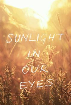 sunlight in our eyes