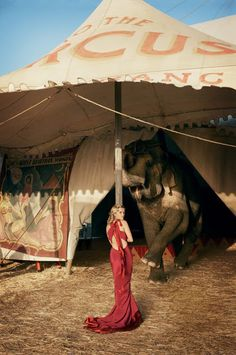 """""""Water For Elephants"""" (fab film btw) Reese and her red dress."""