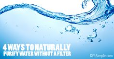 4 Ways to Naturally Purify Water Without a Filter - DIY-Simple