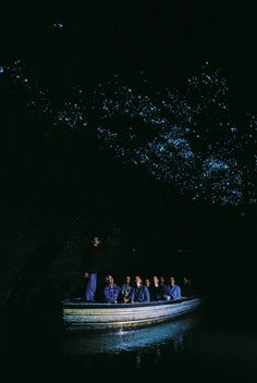 Waitomo Glowworm Cave, New Zealand