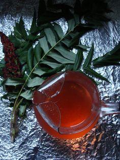 RECIPE: How to Make Sumac Sun Tea from Foraged Sumac