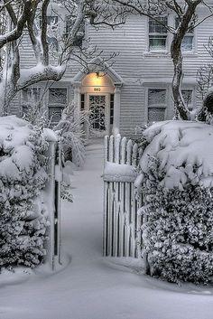 ❥ snow