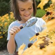 Halloween Games and Ideas for Daisy Girl Scouts | eHow