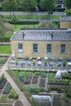 dream. roof top gardens