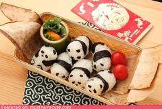baby pandas, balls, roll, holiday treats, bears, food, bento, box, lunch