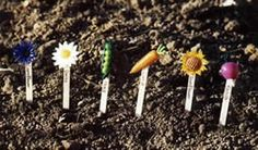 Fimo Seed Markers  http://www.hobbycraft.co.uk/Pages/Ideas/Idea.aspx?id=62
