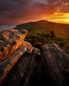 Pisgah/Cherokee National Forest, North Carolina/Tennessee.