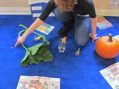 Use all the real pieces to show the life cycle of a pumpkin.