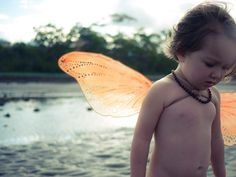 DIY Fairy Wings -- Gregarious Peach