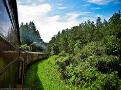 Train to Ella, Sri Lanka (www.secretlanka.com)
