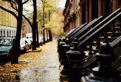 New York in the fall. Wish I lived on a street like this.