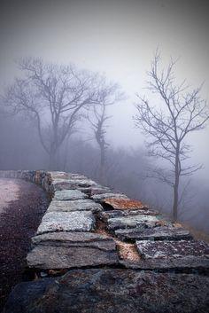 Into the Mystic, Shenandoah Valley, Virginia  photo via deborah