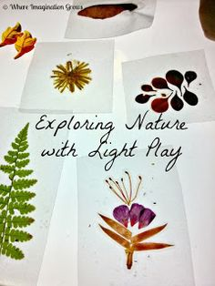 DIY Nature Slides & Light Play from Where Imagination Grows