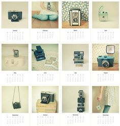 vintage camera calendar 2011