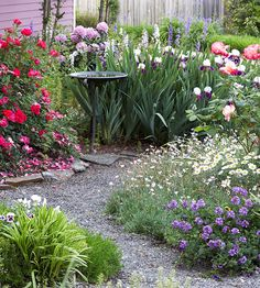 Short and Tall Grouped by height this garden segues from