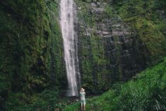 MAUI: Pipiwai Trail to Waimoku Falls
