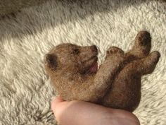 Needle Felted Baby Bear | Flickr - Photo Sharing!