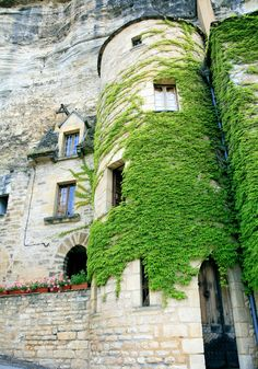 Castle - Dordogne #France