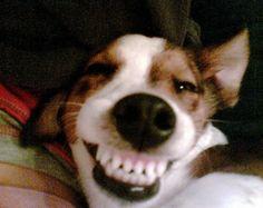 Smiling :-)